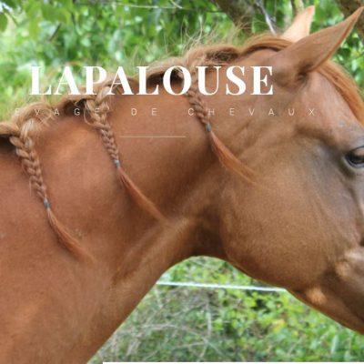 lapalouse